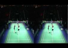 3D Side by side (HD) YONEX German Open 2013 – mixed doubles